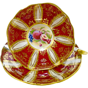 Paragon exquisite gold fruit teacup duo, red  xx