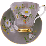 Royal Grafton painted tea cup and saucer, Unique TAUPE