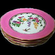 5 Aynsley PINK Mikado bird salad plate, dessert plate