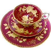 Wedgwood Tonquin Ruby tea cup and saucer trio