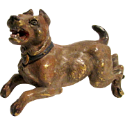 Antique Vienna Austrian Cold Painted Bronze Canine Sculpture - Angry Barking Dog c1900