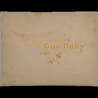 Frances Brundage Illustrated Vintage Baby Book