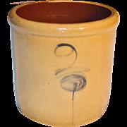 1880's Red Wing Bee Sting Salt Glaze 2 Gallon Crock