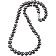 Black Freshwater Cultured Pearl Enhanced Color Necklace 14K Gold Fill Clasp