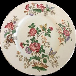 Wedgwood Charnwood Pattern Dinner Plate