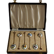 Set of 6 Silver Floral Enamel Spoons