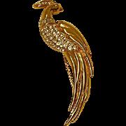 Vintage Monet Bird of Paradise Brooch