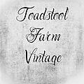 Toadstool Farm Vintage