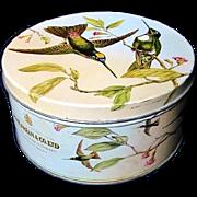 Vintage Peek Frean & Co. Biscuit Tin Hummingbirds