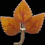 Baltic Amber Vintage Carved Brooch