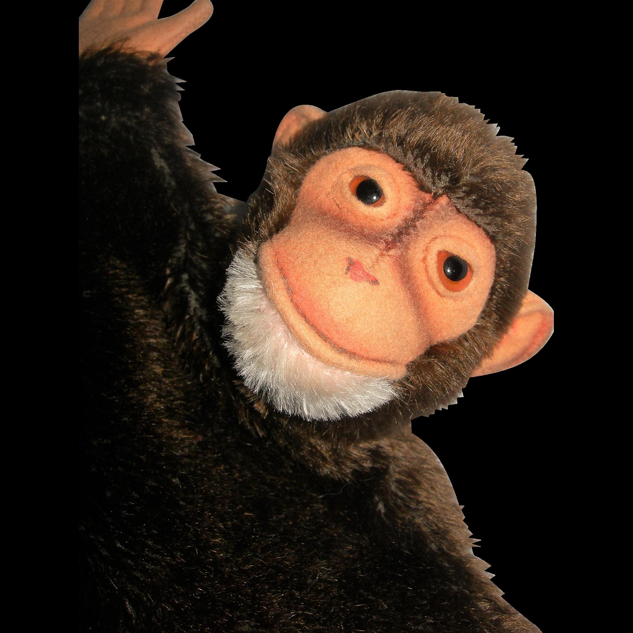 "Jocko Monkey Hand Puppet Steiff 10"" tall"