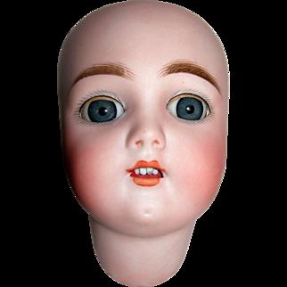 "16 1/2"" Tall Handwerck Bisque Head and Body...Needs TLC"
