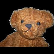"14"" Cinnamon Irish Artist Bear with Pouty Face"