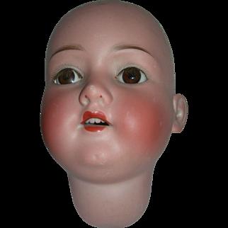 """14 1/2"""" H.C. #390 A 13 M Bisque Head"""