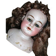 Mysterious Alma Bisque Shoulder plate Head & wig/pate