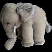 6.5 Inch Steiff Elephant