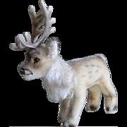 6.5 Inch Steiff Rennie Reindeer