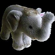 Mohair Steiff Baby Asian Elephant