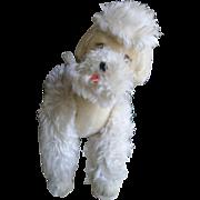 Large Steiff Poodle