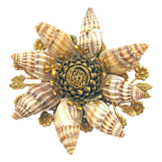 Miriam Haskell Natural Shell Brooch
