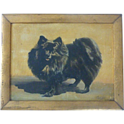 SIGNED & Dated 1921 Pomeranian DOG Oil American School Portrait PAINTING