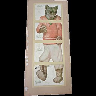 RARE 1907 Teddy BEAR Huld Installment Puzzle Set of 4 POSTCARDS Roosevelt