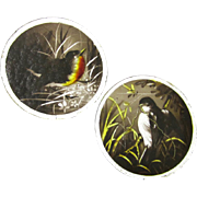 A Pair of Hand-painted Glass Bird Roundels, Victorian