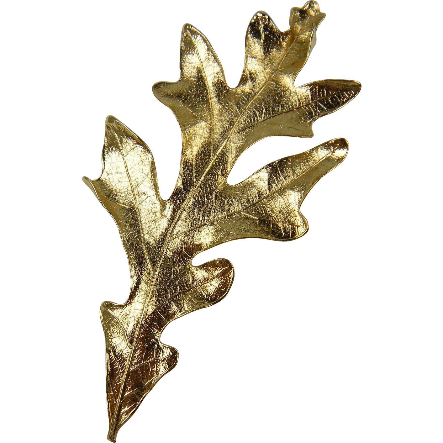 Huge Gold Plated Oak Leaf Brooch and Pendant