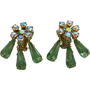 DeLizza and Elster Clip Style Earrings Book Piece