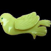 Early Celluloid Bird Brooch