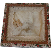Antique Glass Lid  Presentation Box & Fur Collar for Bebe or Fashion Doll.