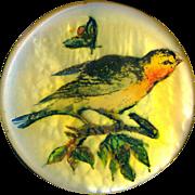 Button--Vintage Studio Songbird Decoupage on Pearl by Blanka Manas