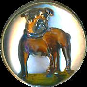 Button--SOLD--Fine Small Circa 1910 Reverse Glass Intaglio English Bulldog in 0.800 Silver