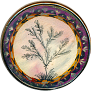 Button ~ Large Fine 18th C. Georgian Painted Botanical Design Under Glass in Gilded Copper