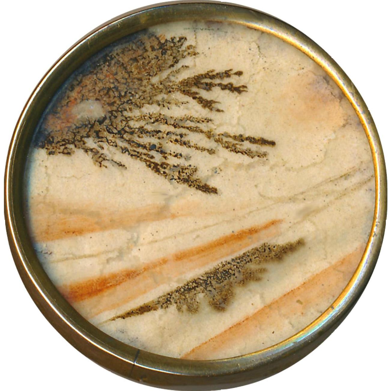 Button--Unusual Fine Georgian 18th C. Trompe L'Oeil (Fooler) Dendritic Agate Under Glass