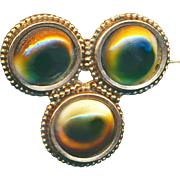 """Brooch--Late 19th C. Shell Operculum """"God Eyes"""" in Gold-plated Brass"""