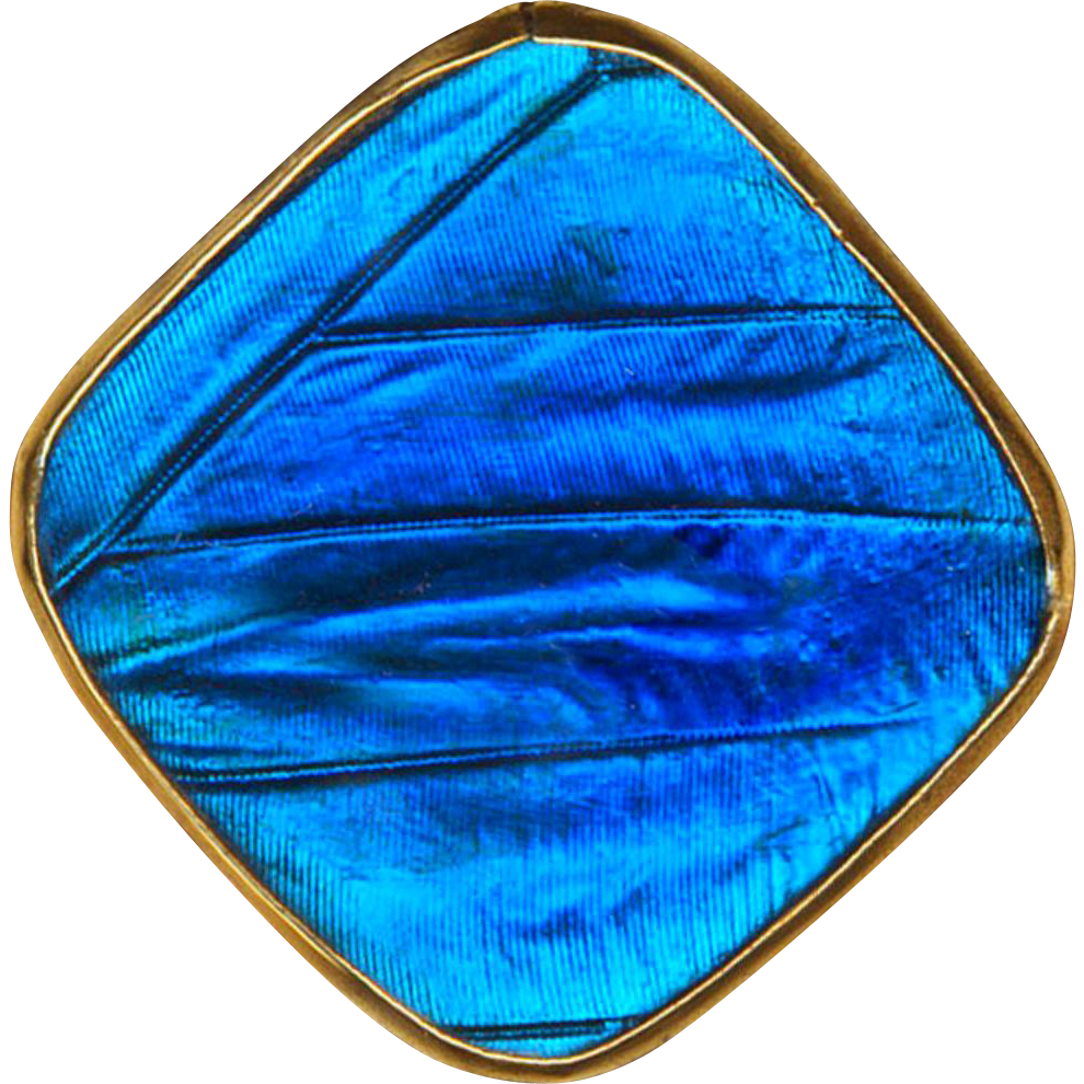 Brooch--Small Luminous Electric Blue Faux Butterfly Wing Glass in Brass Square