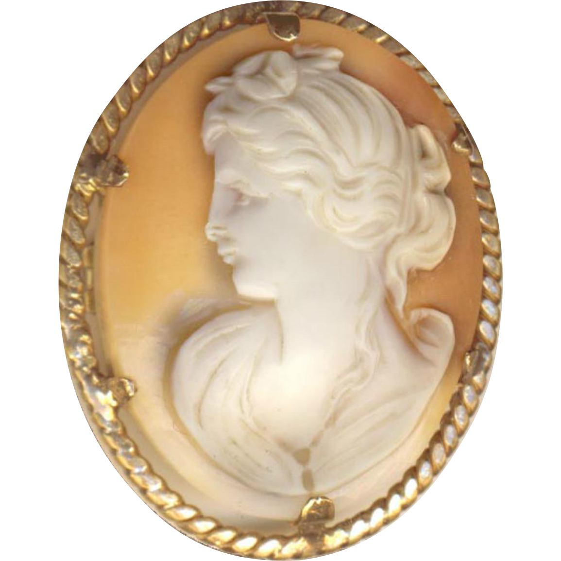 Brooch--Very Nice Vintage Medium Size Shell Cameo in Rolled Gold