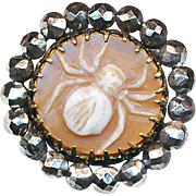 Button--Spider--Late 19th C. Cameo Carved Shell Cameo in Bright Cut Steels Medium