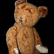 Antique American Teddy Bear