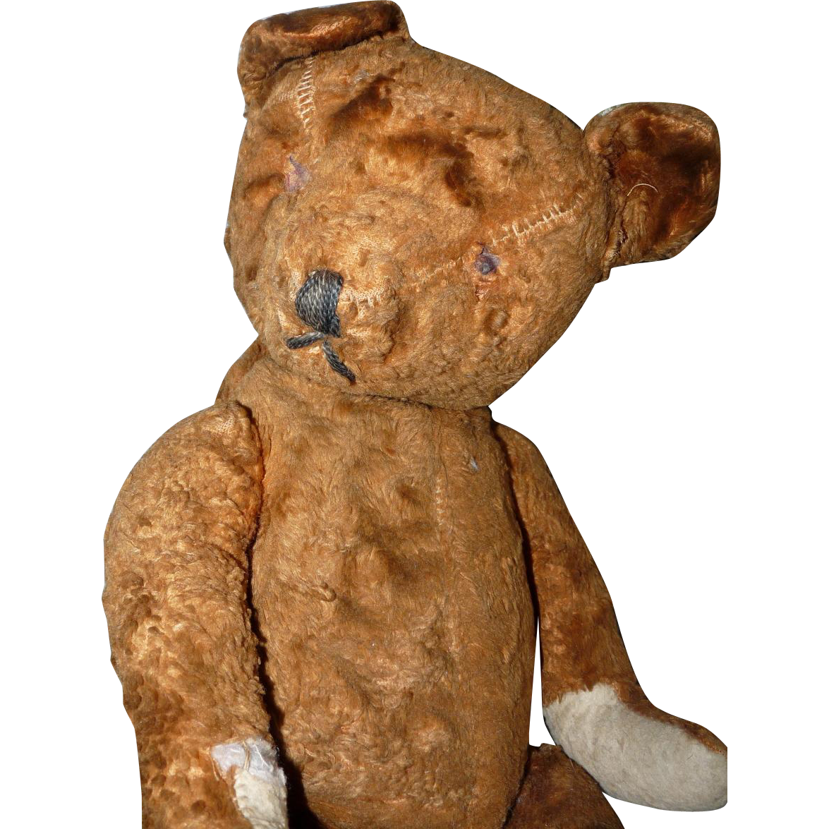 Antique American Teddy Bear