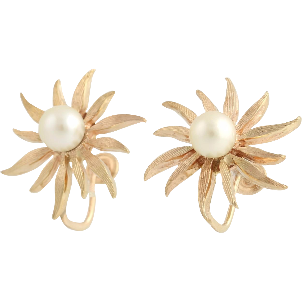 Pearl Flower Earrings - 14k Yellow Gold Daisy Cultured Screw On Non-Pierced