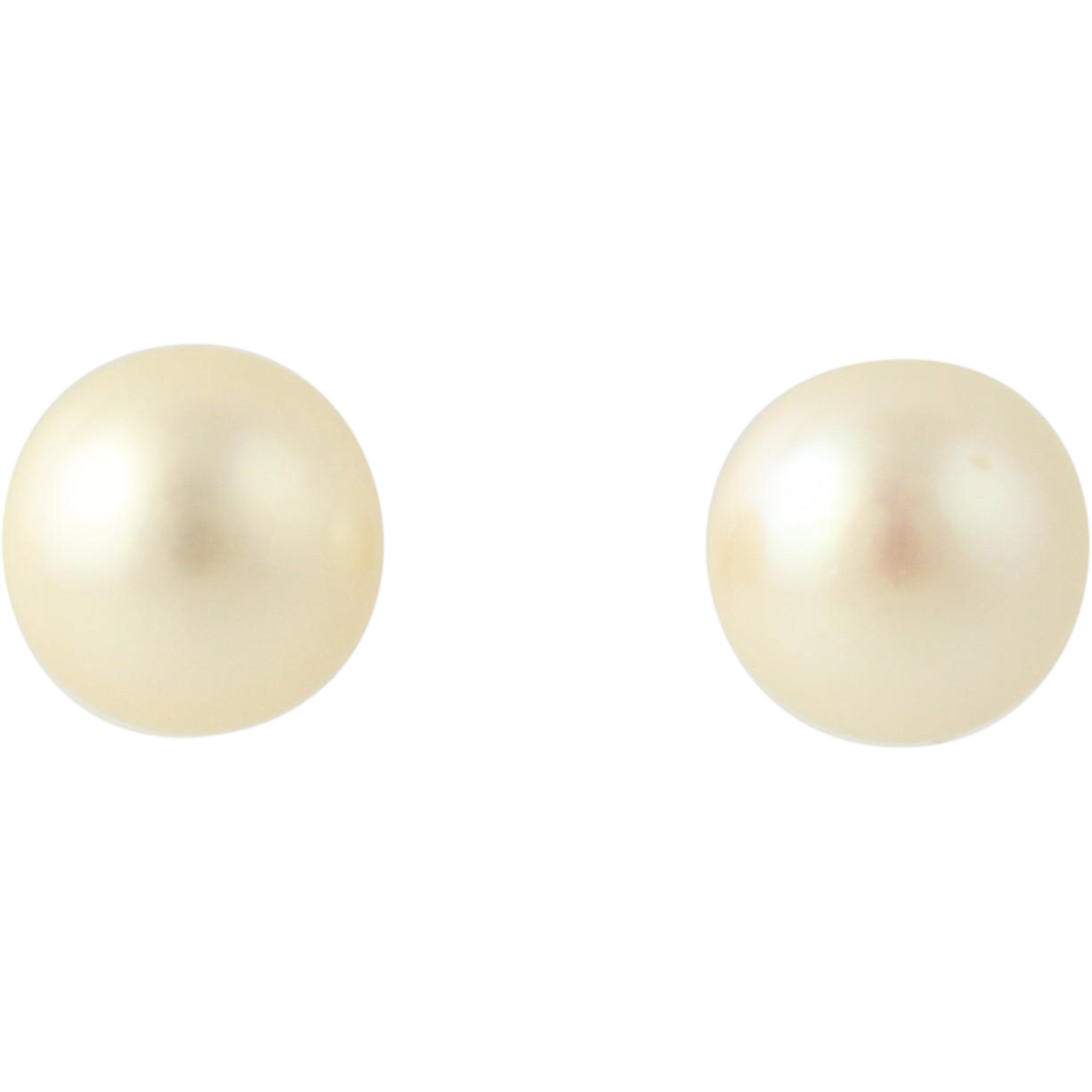 7.5mm Cultured Akoya Pear Stud Earrings - 14k Yellow Gold Classic