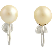 Cultured Pearl Earrings - 14k White Gold June Gift Screw-on Backs Non-Pierced