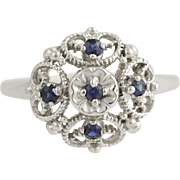 Sapphire Ring - 10k White Gold September Birthstone .25ctw