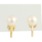Pearl Stud Earrings - 14k Yellow Gold 7.2mm High Luster Non-Pierced Screw Back