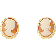 Cameo Stud Earrings - Carved Shell 14k Yellow Gold Pierced Women's Oval