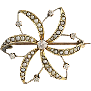 Edwardian Flower Brooch - 10k Yellow Gold Diamonds & Pearls Antique Watch Pin