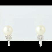 Cultured Pearl Earrings - 14k White Gold June Gift Non-Pierced Screw-On Backs