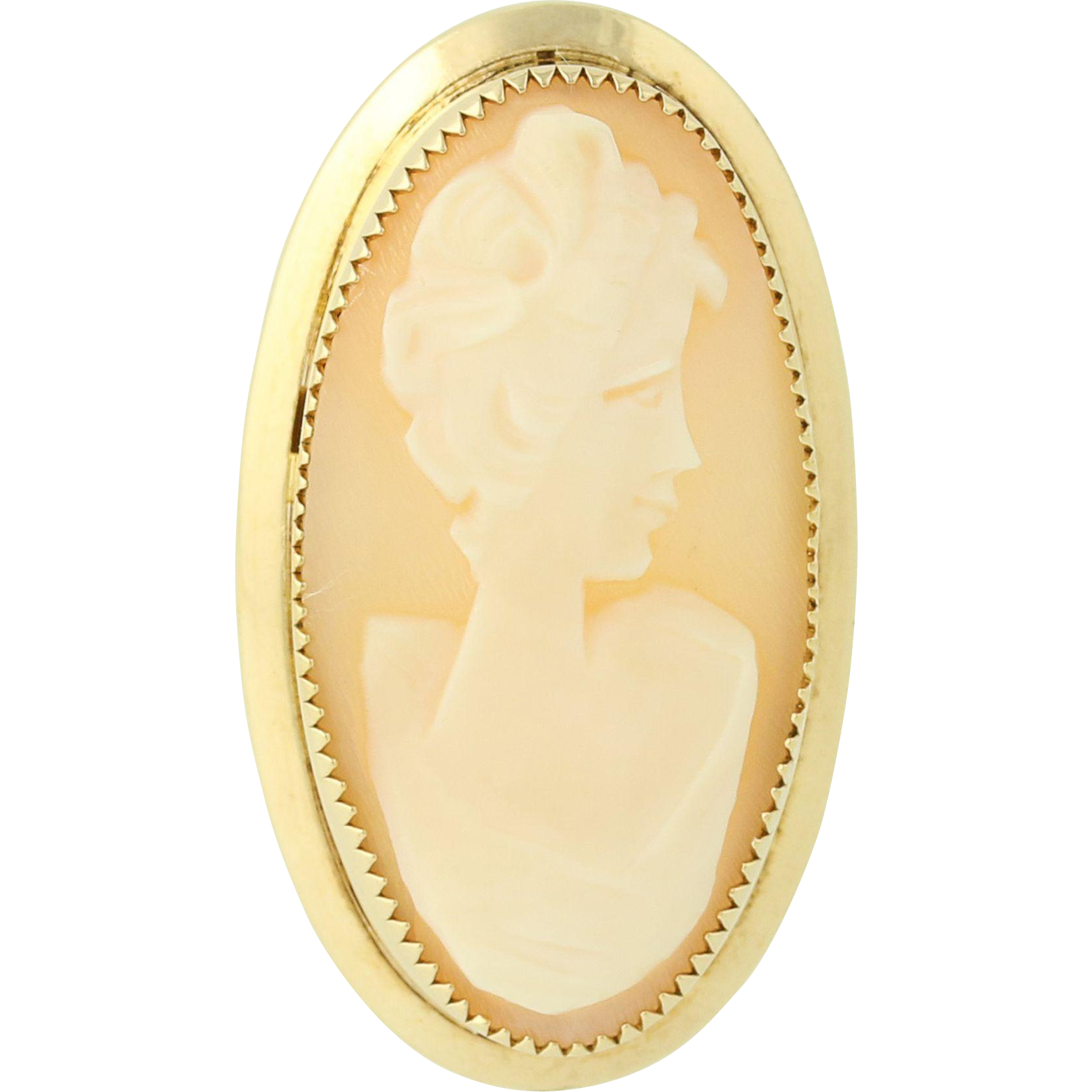Vintage Cameo Brooch - Carved Shell 1/20 12k Gold Filled Female Bust Pin